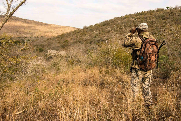 Human remains found in Kruger Park believed to be of missing ranger