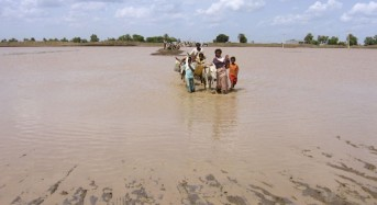 Nearly 1M people in South Sudan displaced by floods