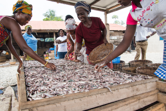 Decline in Ghana's fishing sector worrying – US government official